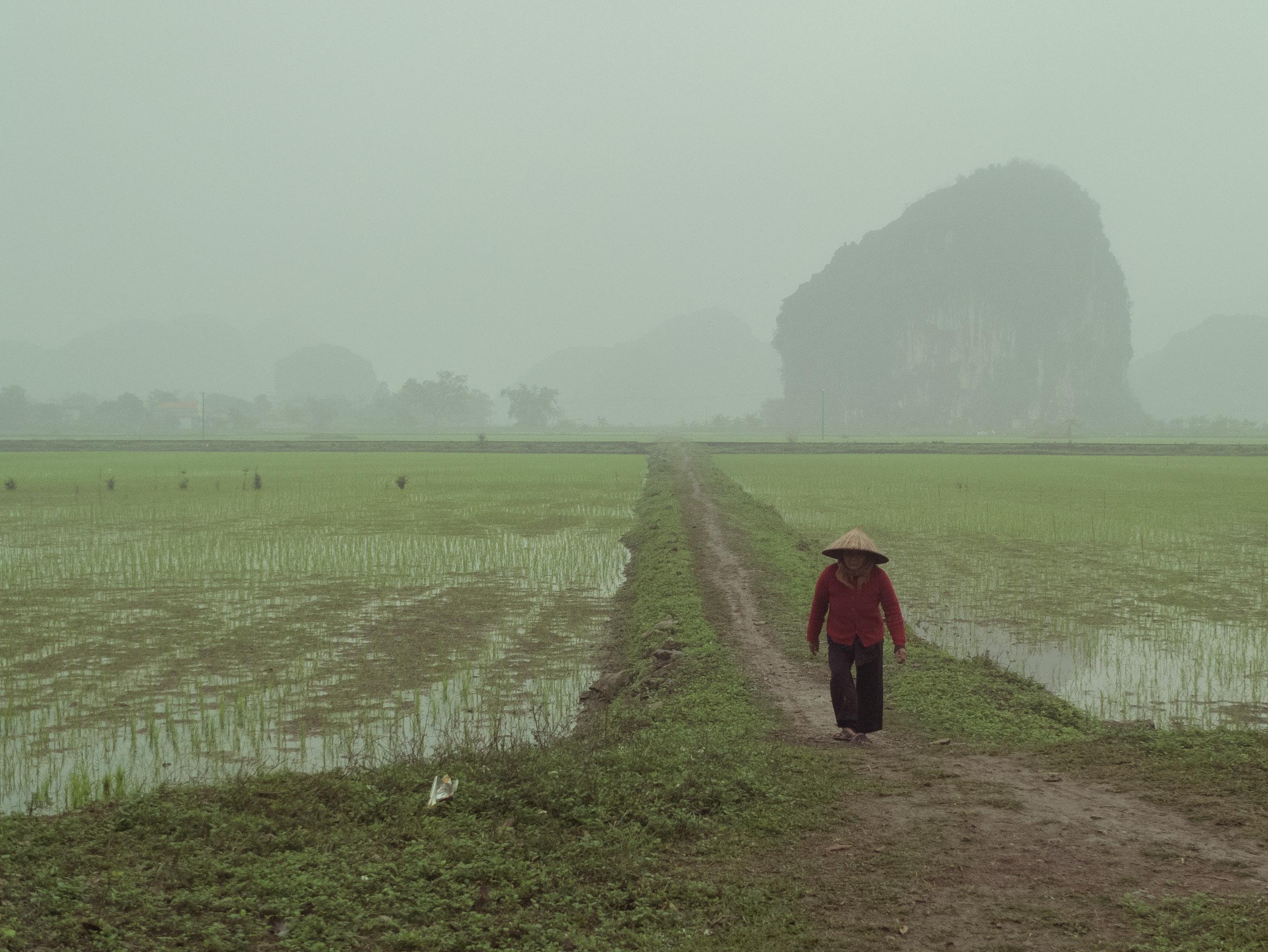 Vietnam_WebRes-19