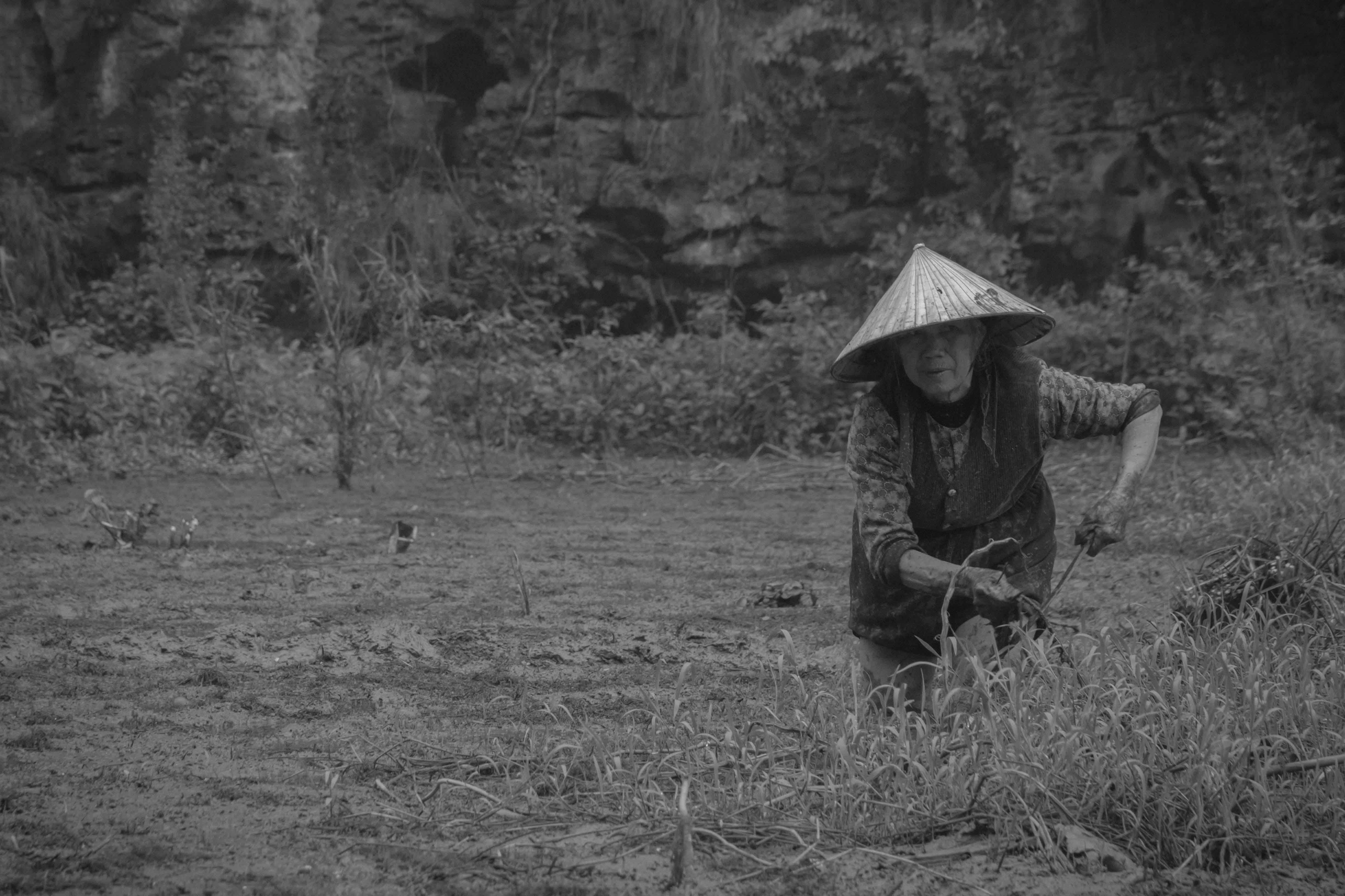 Vietnam_WebRes-18